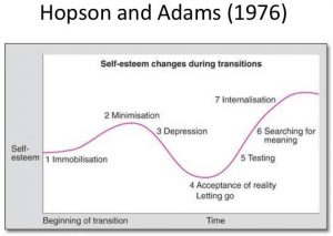 Hopson & Adams Model of Transition